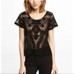Express Sheer Embroidered Lace Short Sleeve Top